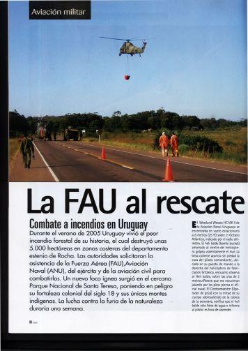 INCENDIOS EN URUGUAYPg1(FEB07)
