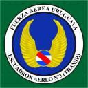 th_2005_Emblema_del_Escuadron_Aereo_No_3_Transporte_-_Circa_2005