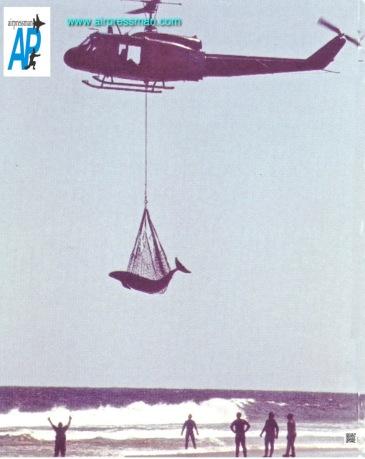 0834 .2. rescate de ballenas 1999 jaureguiberry